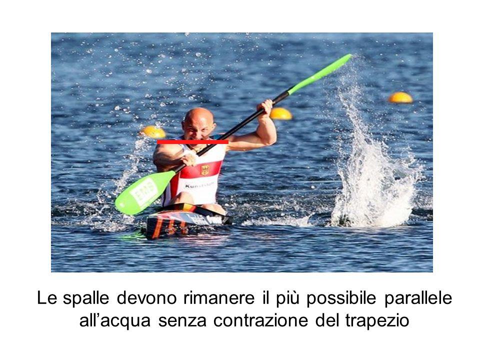 Le spalle devono rimanere il più possibile parallele allacqua senza contrazione del trapezio