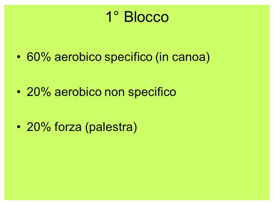 1° Blocco 60% aerobico specifico (in canoa) 20% aerobico non specifico 20% forza (palestra)