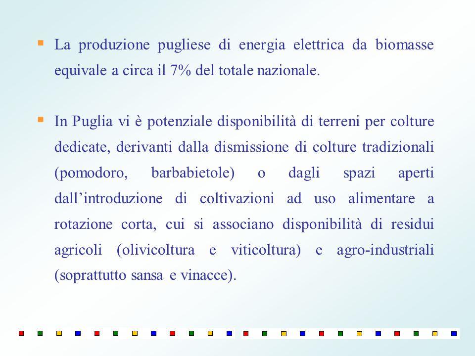 La produzione pugliese di energia elettrica da biomasse equivale a circa il 7% del totale nazionale. In Puglia vi è potenziale disponibilità di terren