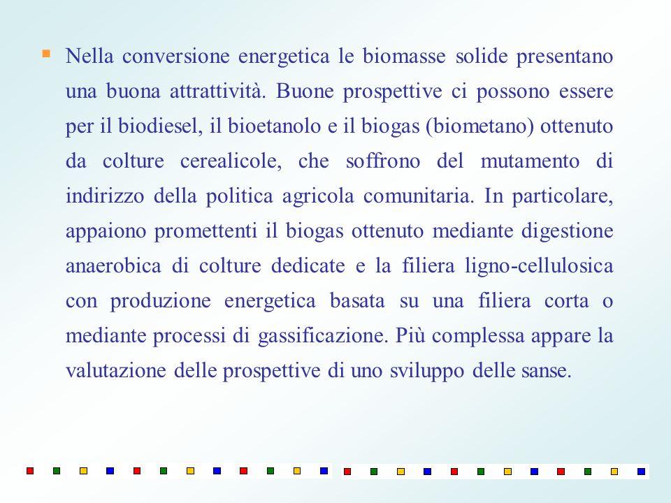 Nella conversione energetica le biomasse solide presentano una buona attrattività. Buone prospettive ci possono essere per il biodiesel, il bioetanolo