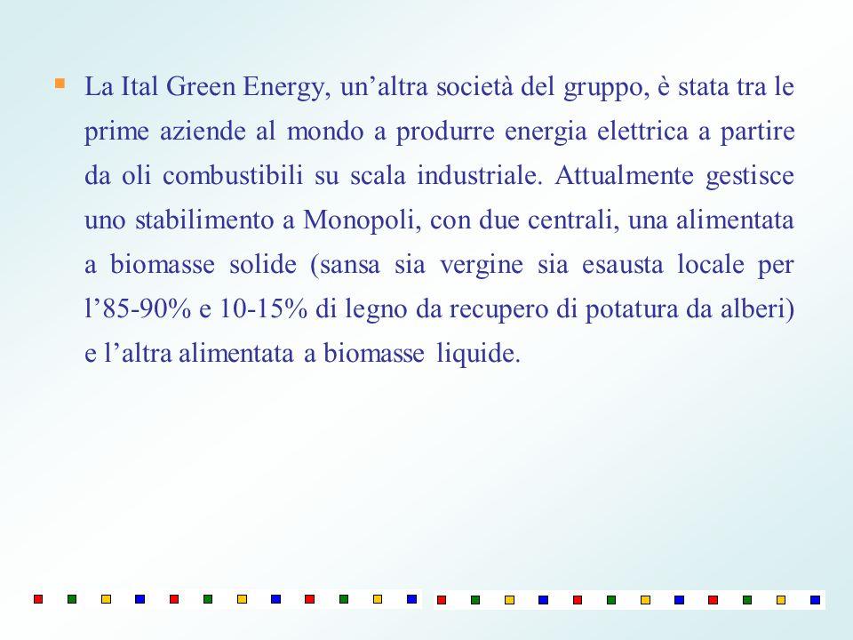 La Ital Green Energy, unaltra società del gruppo, è stata tra le prime aziende al mondo a produrre energia elettrica a partire da oli combustibili su