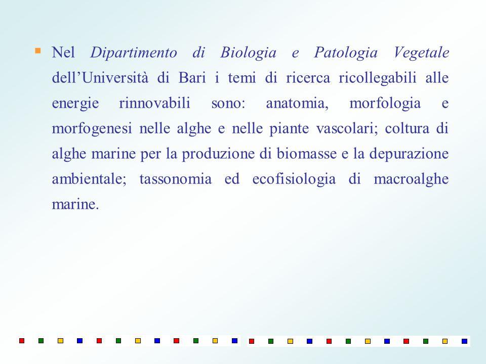 Nel Dipartimento di Biologia e Patologia Vegetale dellUniversità di Bari i temi di ricerca ricollegabili alle energie rinnovabili sono: anatomia, morf