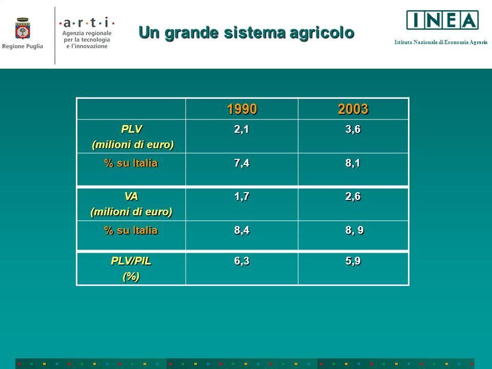 Istituto Nazionale di Economia Agraria Un grande sistema agricolo 19902003 PLV (milioni di euro) (milioni di euro)2,13,6 % su Italia 7,48,1 VA (milioni di euro) 1,72,6 % su Italia 8,4 8, 9 8, 9 PLV/PIL(%)6,35,9