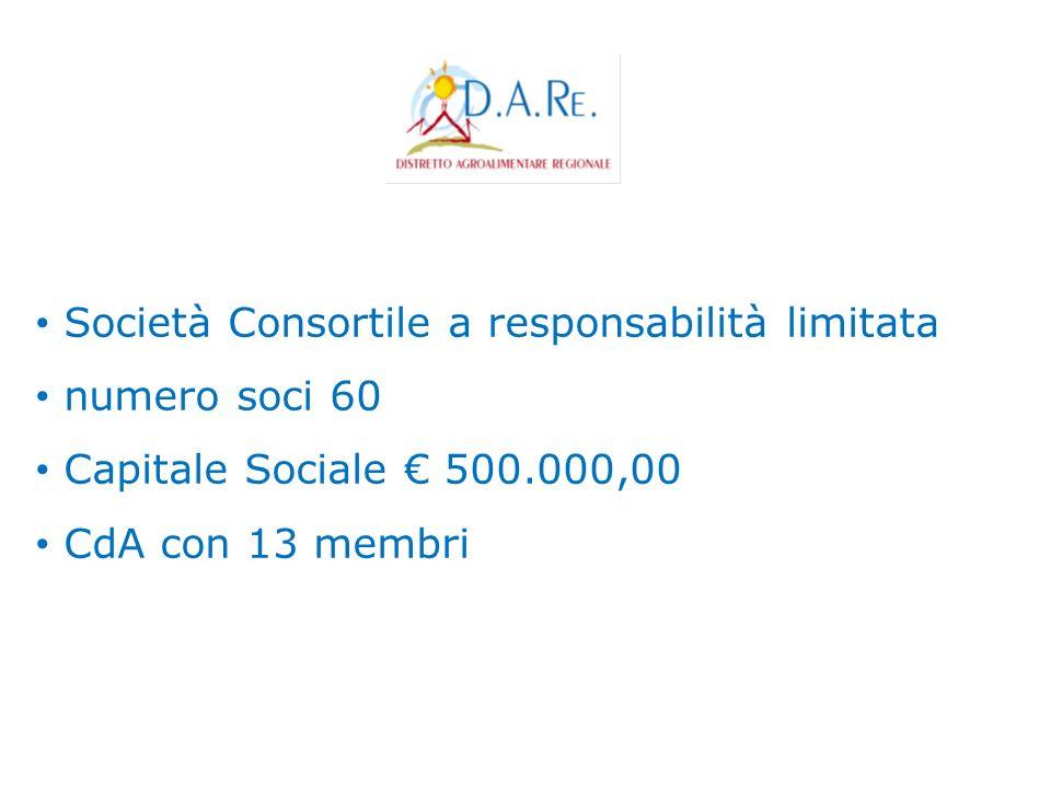 Società Consortile a responsabilità limitata numero soci 60 Capitale Sociale 500.000,00 CdA con 13 membri
