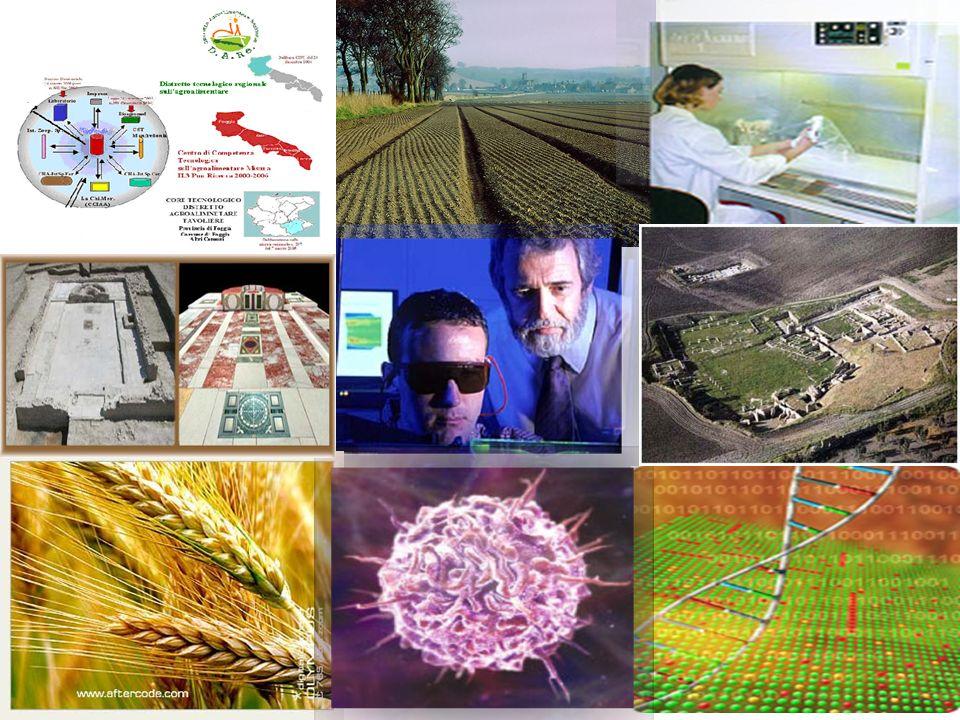 I Progetti di Ricerca Industriale (D.lgs.297/1999) ProgettiRuolo del D.A.Re.