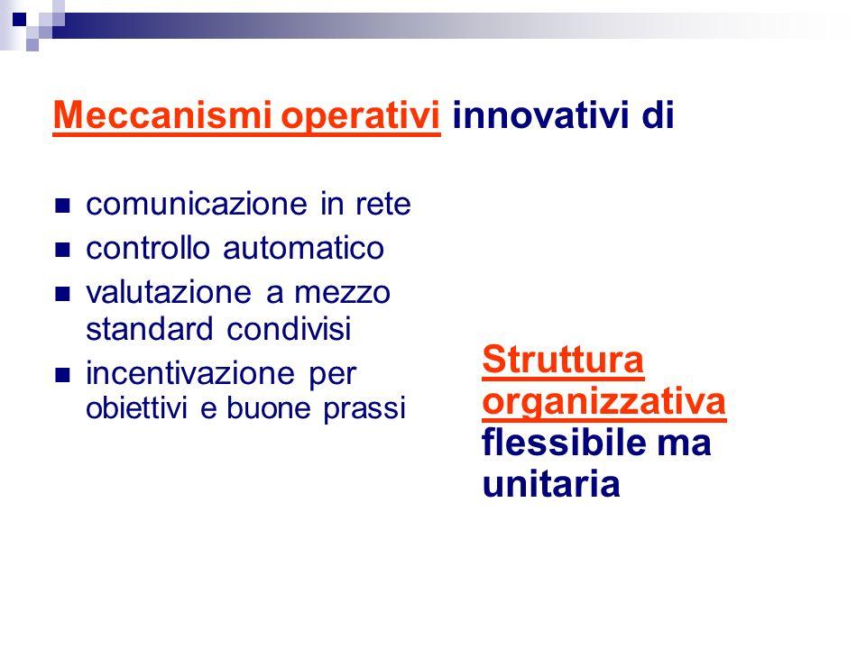 Meccanismi operativi innovativi di comunicazione in rete controllo automatico valutazione a mezzo standard condivisi incentivazione per obiettivi e buone prassi Struttura organizzativa flessibile ma unitaria