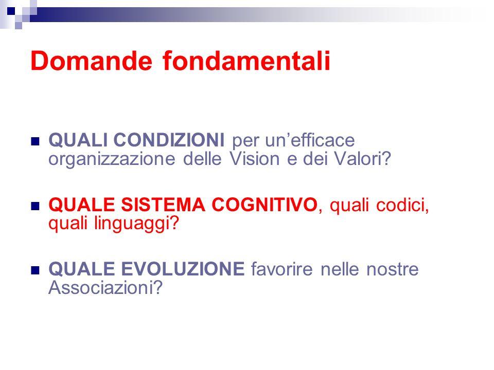 Domande fondamentali QUALI CONDIZIONI per unefficace organizzazione delle Vision e dei Valori? QUALE SISTEMA COGNITIVO, quali codici, quali linguaggi?