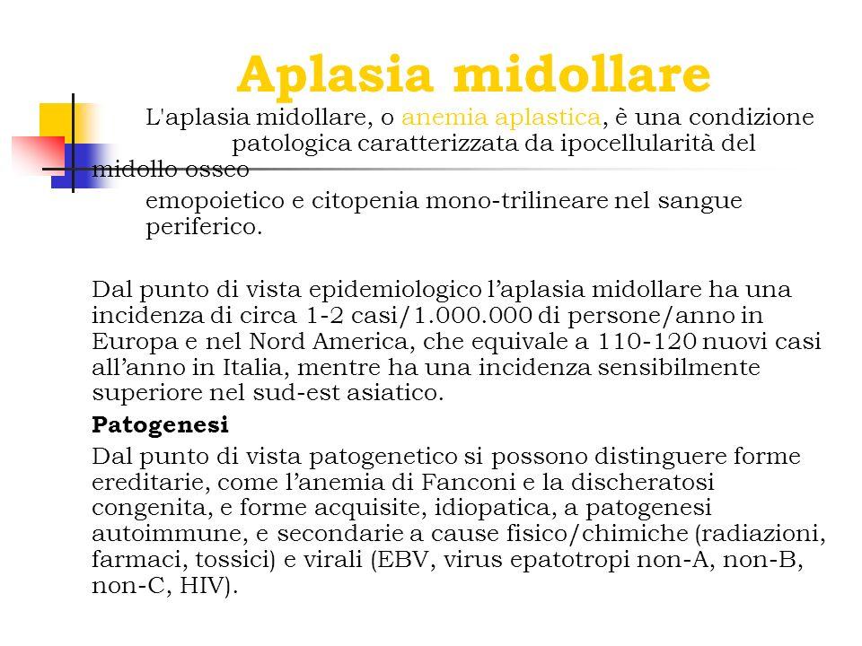 Aplasia midollare L'aplasia midollare, o anemia aplastica, è una condizione patologica caratterizzata da ipocellularità del midollo osseo emopoietico