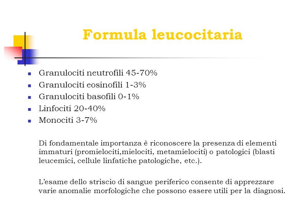 Formula leucocitaria Granulociti neutrofili 45-70% Granulociti eosinofili 1-3% Granulociti basofili 0-1% Linfociti 20-40% Monociti 3-7% Di fondamental