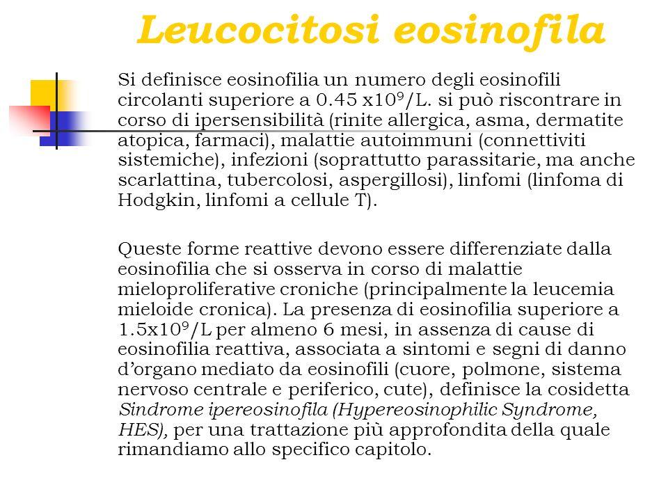 Leucocitosi eosinofila Si definisce eosinofilia un numero degli eosinofili circolanti superiore a 0.45 x10 9 /L. si può riscontrare in corso di iperse