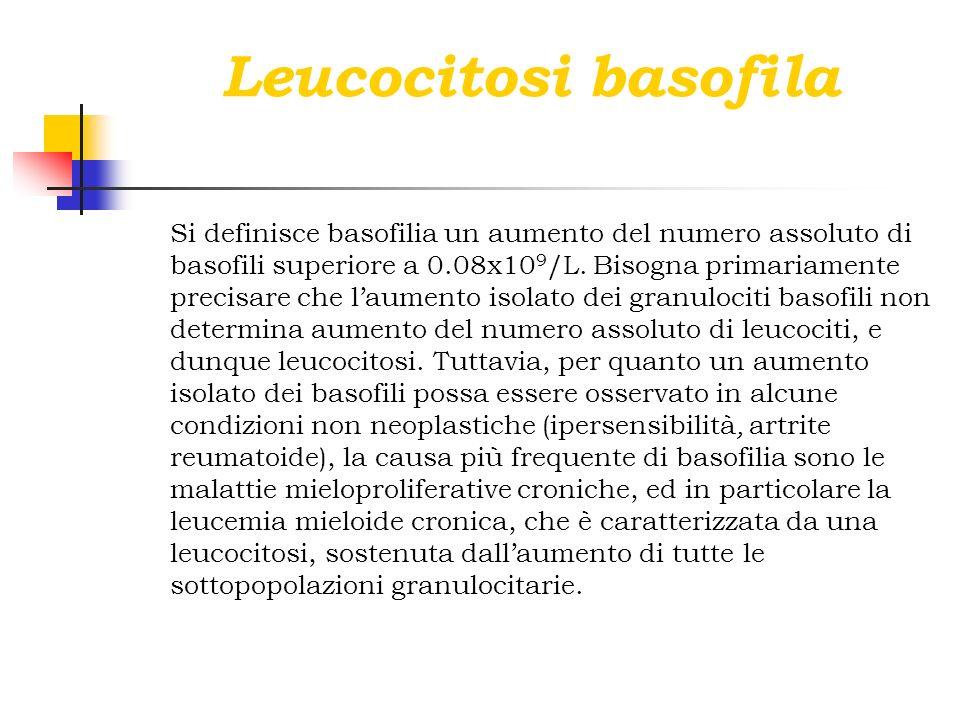 Leucocitosi basofila Si definisce basofilia un aumento del numero assoluto di basofili superiore a 0.08x10 9 /L. Bisogna primariamente precisare che l