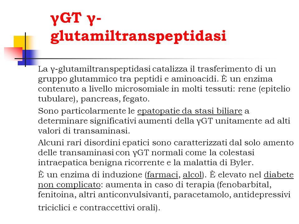γGT γ- glutamiltranspeptidasi La γ-glutamiltranspeptidasi catalizza il trasferimento di un gruppo glutammico tra peptidi e aminoacidi. È un enzima con