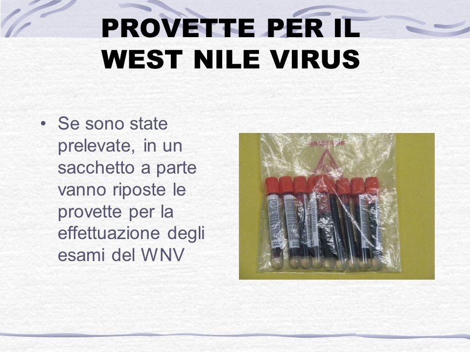 PROVETTE PER IL WEST NILE VIRUS Se sono state prelevate, in un sacchetto a parte vanno riposte le provette per la effettuazione degli esami del WNV