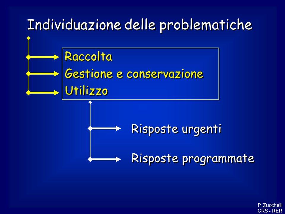 Raccolta Gestione e conservazione Utilizzo Raccolta Gestione e conservazione Utilizzo Individuazione delle problematiche Risposte urgenti Risposte pro