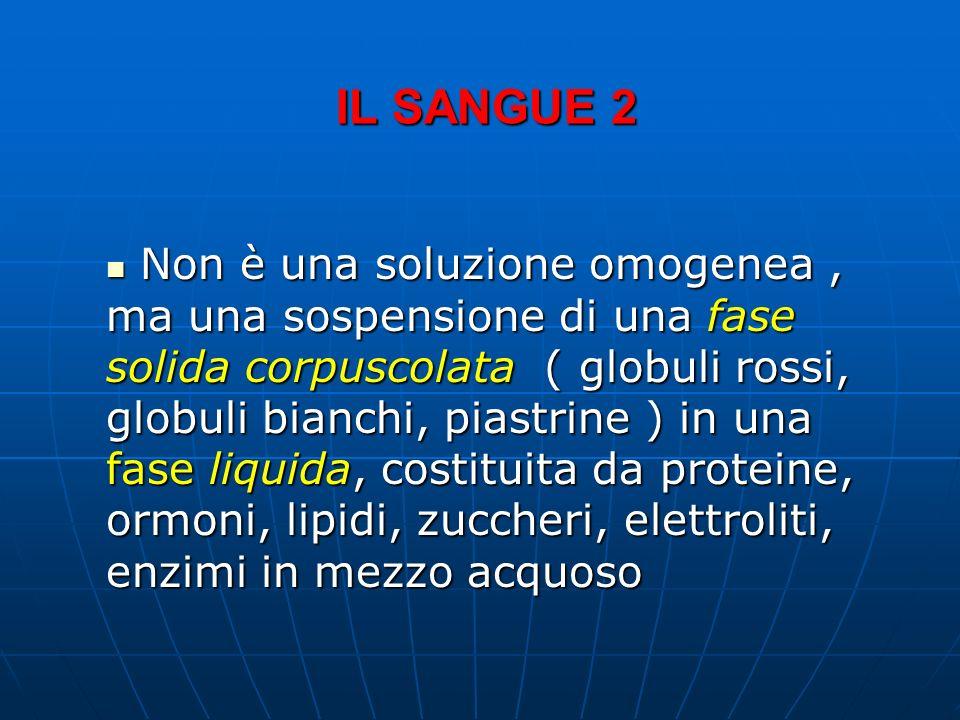 IL SANGUE 2 Non è una soluzione omogenea, ma una sospensione di una fase solida corpuscolata ( globuli rossi, globuli bianchi, piastrine ) in una fase