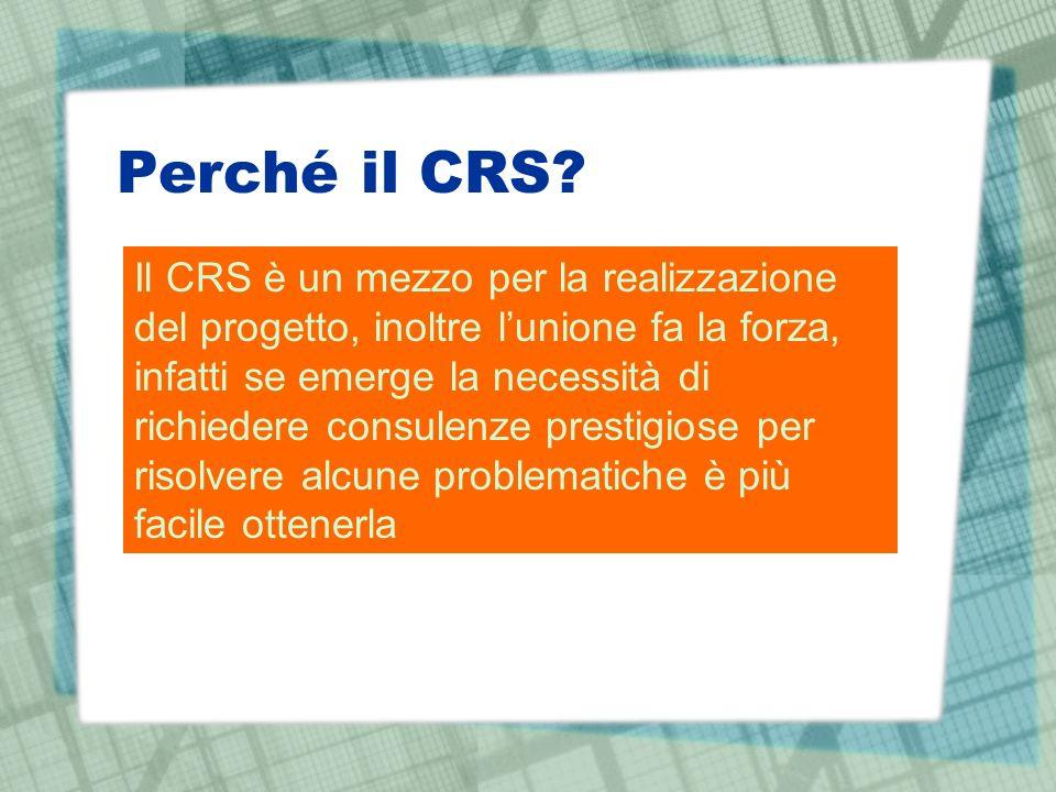Perché il CRS? Il CRS è un mezzo per la realizzazione del progetto, inoltre lunione fa la forza, infatti se emerge la necessità di richiedere consulen