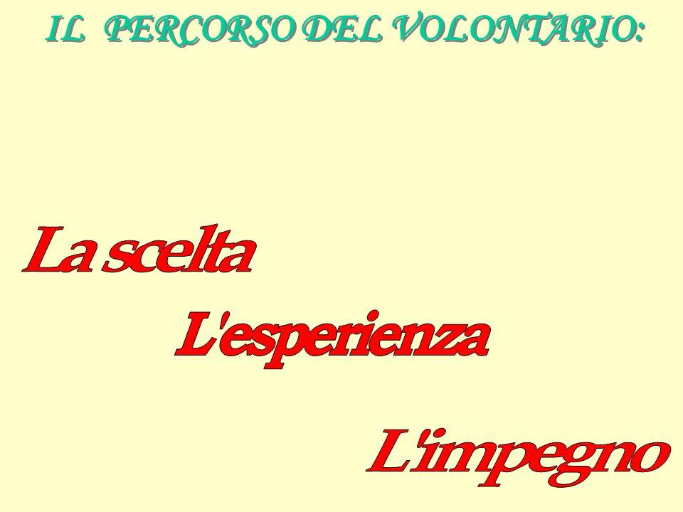 IL PERCORSO DEL VOLONTARIO: