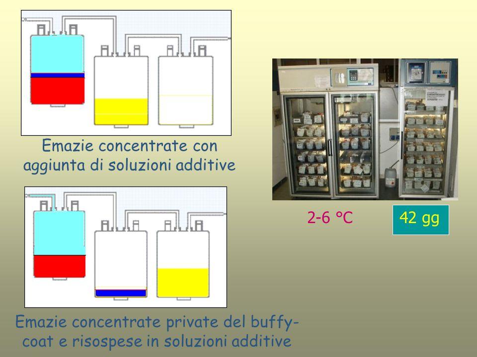 Emazie concentrate con aggiunta di soluzioni additive Emazie concentrate private del buffy- coat e risospese in soluzioni additive 2-6 °C 42 gg