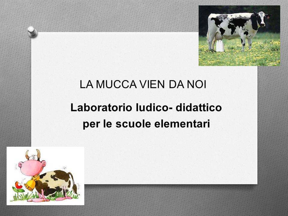 LA MUCCA VIEN DA NOI Laboratorio ludico- didattico per le scuole elementari