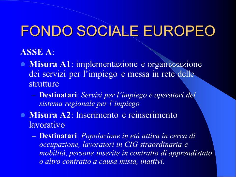 FONDO SOCIALE EUROPEO ASSE A: Misura A1: implementazione e organizzazione dei servizi per limpiego e messa in rete delle strutture – Destinatari: Serv