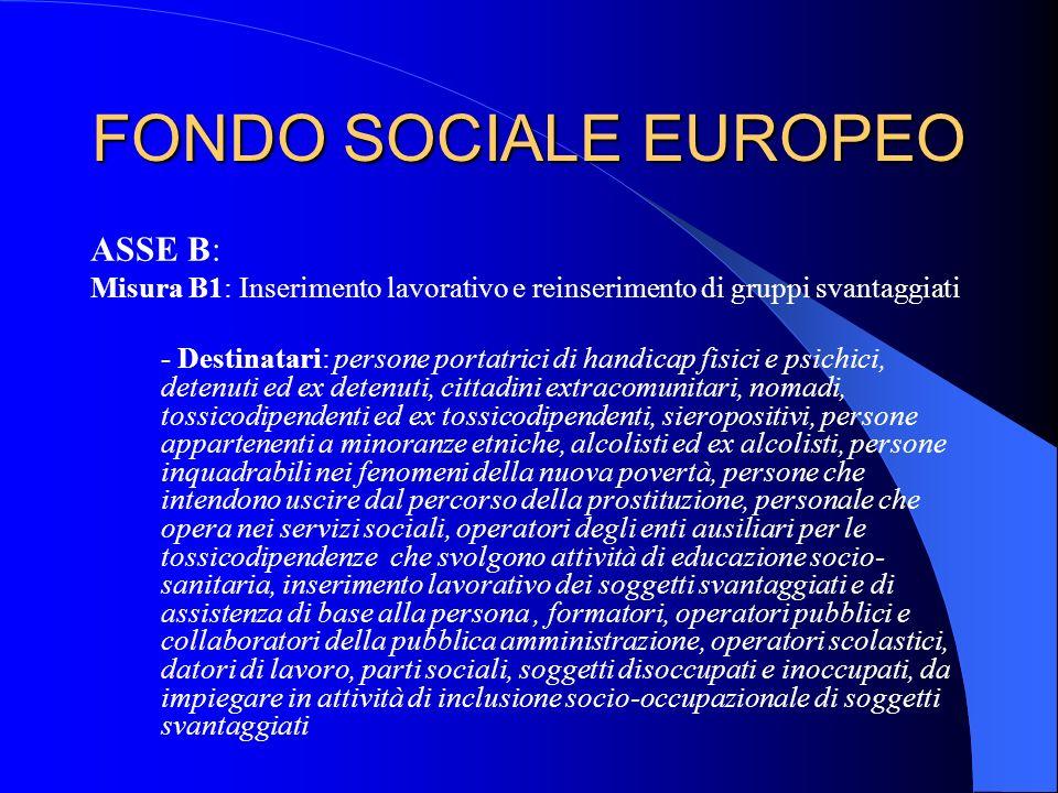 FONDO SOCIALE EUROPEO ASSE B: Misura B1: Inserimento lavorativo e reinserimento di gruppi svantaggiati - Destinatari: persone portatrici di handicap f