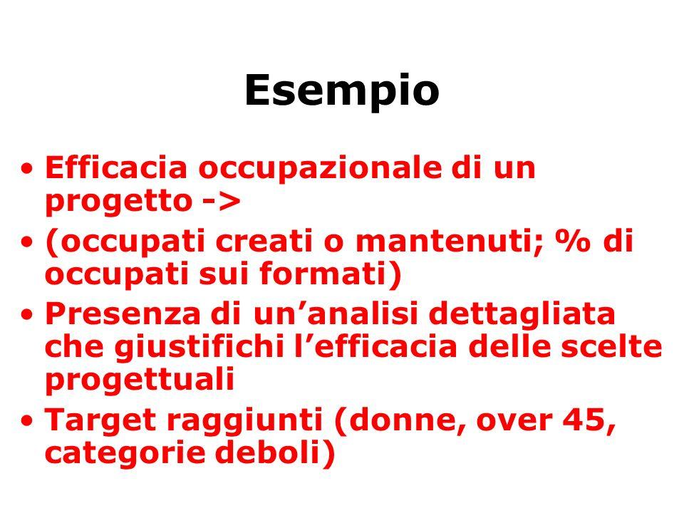 Esempio Efficacia occupazionale di un progetto -> (occupati creati o mantenuti; % di occupati sui formati) Presenza di unanalisi dettagliata che giustifichi lefficacia delle scelte progettuali Target raggiunti (donne, over 45, categorie deboli)