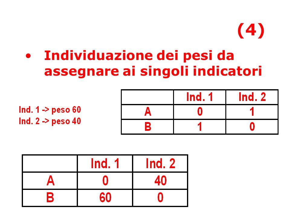 (4) Individuazione dei pesi da assegnare ai singoli indicatori