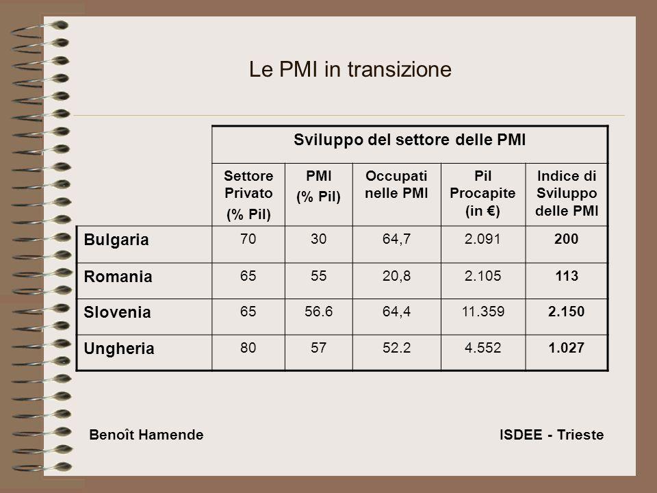 Le PMI in transizione Sviluppo del settore delle PMI Settore Privato (% Pil) PMI (% Pil) Occupati nelle PMI Pil Procapite (in ) Indice di Sviluppo delle PMI Bulgaria 703064,72.091200 Romania 655520,82.105113 Slovenia 6556.664,411.3592.150 Ungheria 805752.24.5521.027 Benoît Hamende ISDEE - Trieste