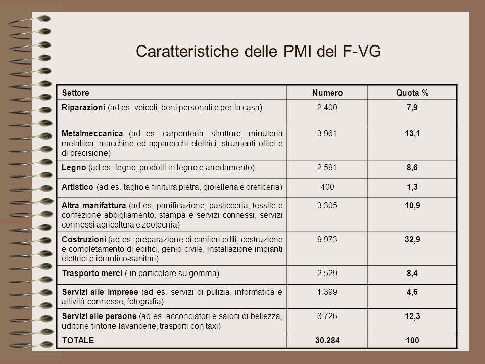 Caratteristiche delle PMI del F-VG SettoreNumeroQuota % Riparazioni (ad es.
