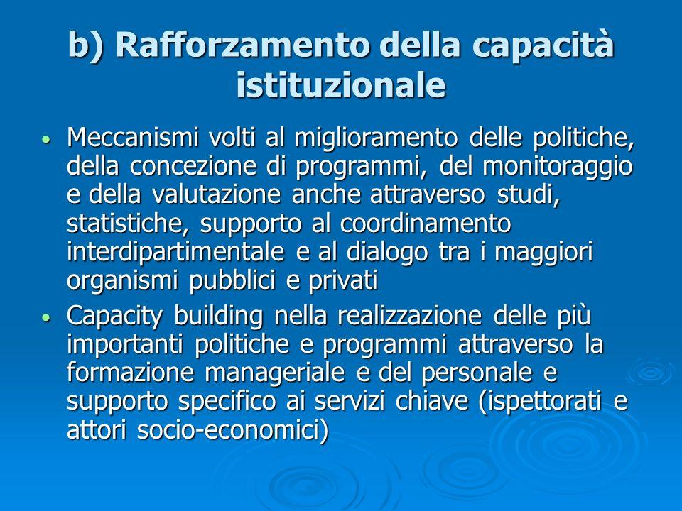 b) Rafforzamento della capacità istituzionale Meccanismi volti al miglioramento delle politiche, della concezione di programmi, del monitoraggio e del