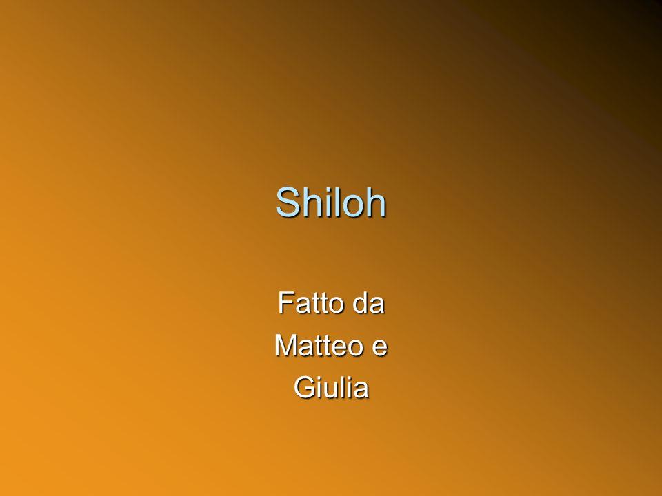Shiloh Fatto da Matteo e Giulia