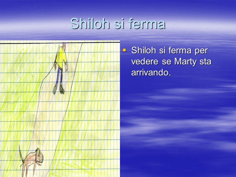 Shiloh si ferma Shiloh si ferma per vedere se Marty sta arrivando.