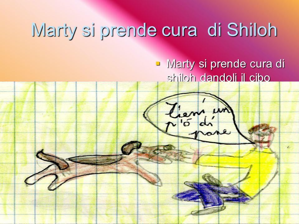 Marty si prende cura di Shiloh Marty si prende cura di shiloh dandoli il cibo Marty si prende cura di shiloh dandoli il cibo