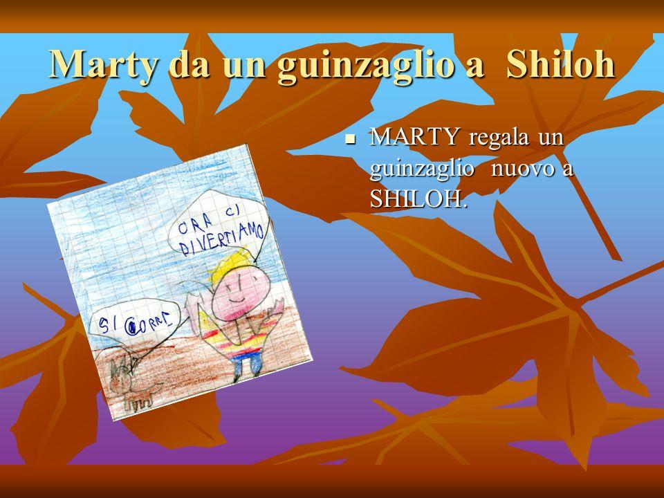 Marty da un guinzaglio a Shiloh MARTY regala un guinzaglio nuovo a SHILOH.