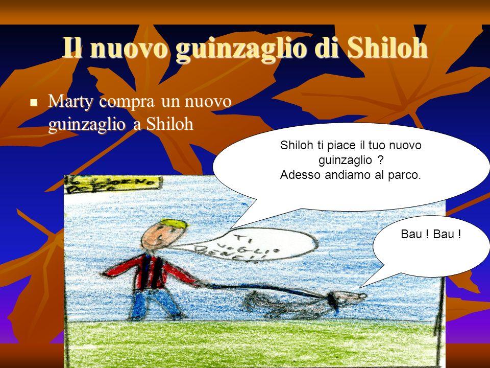 Il nuovo guinzaglio di Shiloh Marty compra un nuovo guinzaglio a Shiloh Marty compra un nuovo guinzaglio a Shiloh Shiloh ti piace il tuo nuovo guinzaglio .