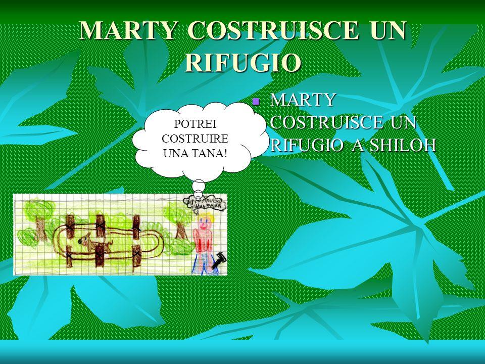 MARTY COSTRUISCE UN RIFUGIO MARTY COSTRUISCE UN RIFUGIO A SHILOH MARTY COSTRUISCE UN RIFUGIO A SHILOH POTREI COSTRUIRE UNA TANA!
