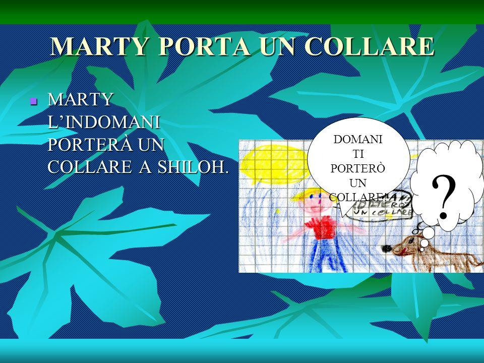 MARTY PORTA UN COLLARE MARTY LINDOMANI PORTERÀ UN COLLARE A SHILOH.