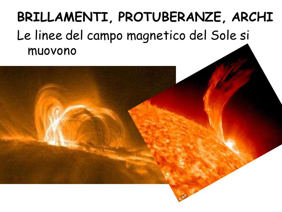 BRILLAMENTI, PROTUBERANZE, ARCHI Le linee del campo magnetico del Sole si muovono