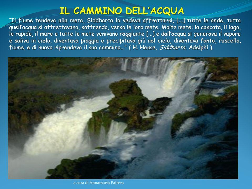 a cura di Annamaria Paltera IL CAMMINO DELLACQUA Il fiume tendeva alla meta, Siddharta lo vedeva affrettarsi, [...] tutte le onde, tutta quellacqua si