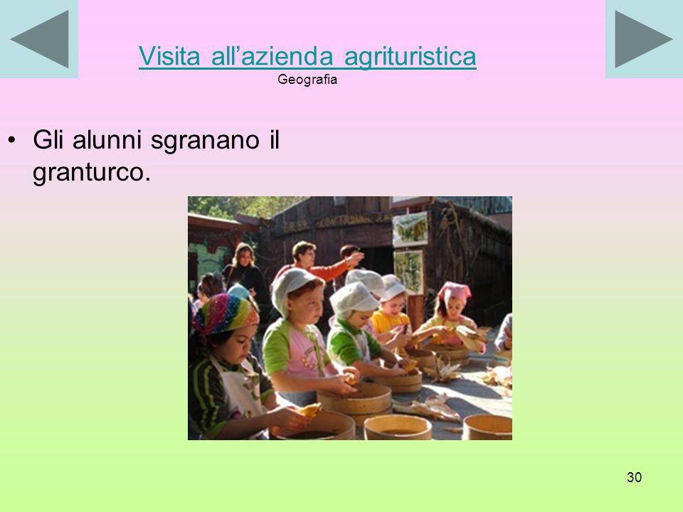 29 Visita allazienda agrituristica Visita allazienda agrituristica Montecorvino Pugliano (SA) 15 novembre 2006 Gli alunni lavorano con il mortaio.