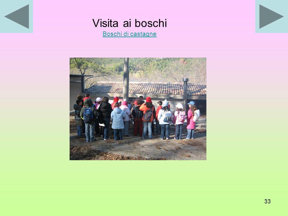 32 La visita si è così articolata: - conoscenza dei boschi di castagne e delle modalità di essiccazione delle castagne; - conoscenza delle varie fasi