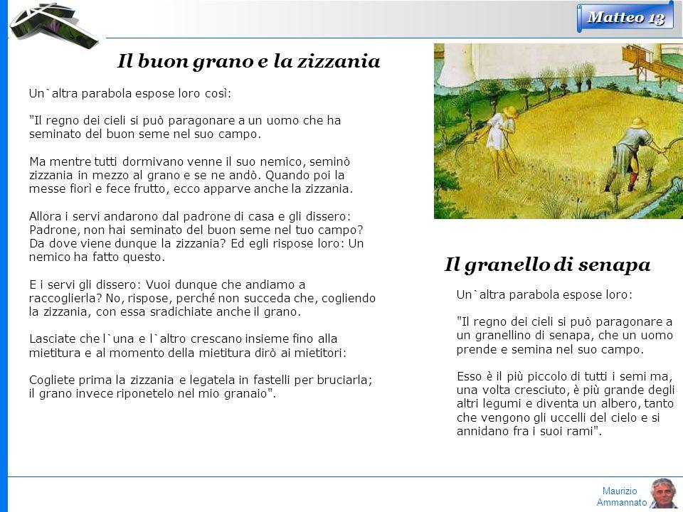 Maurizio Ammannato Matteo 13 Il buon grano e la zizzania Un`altra parabola espose loro cos ì :