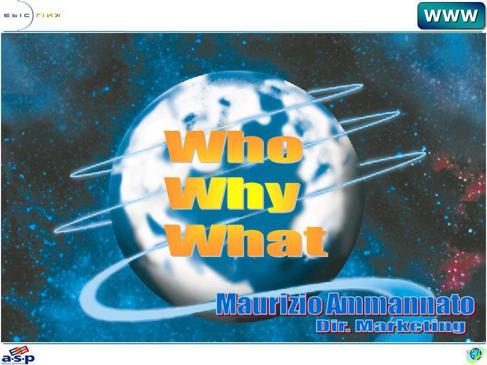 WWWWWW WHY: Driver Strategici