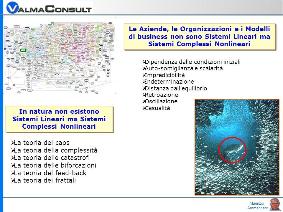 Maurizio Ammannato In natura non esistono Sistemi Lineari ma Sistemi Complessi Nonlineari Le Aziende, le Organizzazioni e i Modelli di business non so