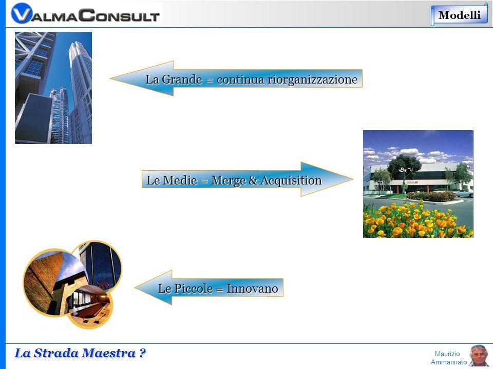 Maurizio Ammannato La Grande = continua riorganizzazione Le Medie = Merge & Acquisition Le Piccole = Innovano La Strada Maestra ? Modelli