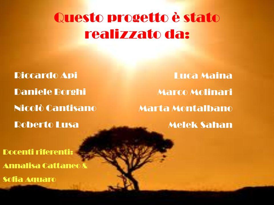 Questo progetto è stato realizzato da: Riccardo Api Daniele Borghi Nicolò Cantisano Roberto Lusa Luca Maina Marco Molinari Marta Montalbano Melek Saha