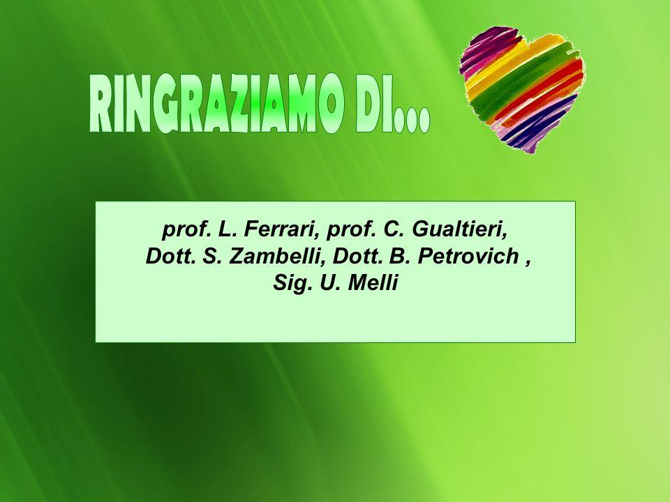 prof. L. Ferrari, prof. C. Gualtieri, Dott. S. Zambelli, Dott. B. Petrovich, Sig. U. Melli