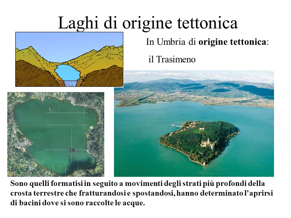 Laghi di origine tettonica In Umbria di origine tettonica: il Trasimeno Sono quelli formatisi in seguito a movimenti degli strati più profondi della c