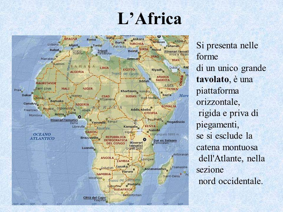 LAfrica Si presenta nelle forme di un unico grande tavolato, è una piattaforma orizzontale, rigida e priva di piegamenti, se si esclude la catena montuosa dell Atlante, nella sezione nord occidentale.