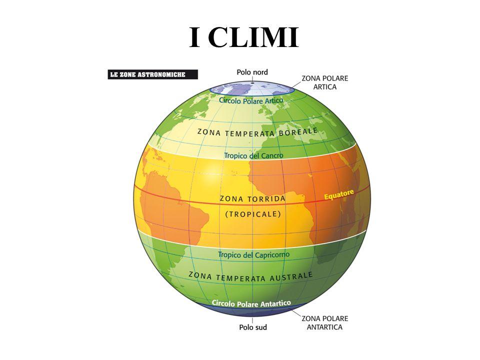 LE ZONE CLIMATICHE Bioma Complesso degli ecosistemi di una particolare area geografica del pianeta, generalmente definiti in base al tipo di vegetazione dominante.
